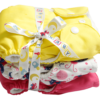 Cloth Diaper Manufacturers, Apple Blossoms Cloth Diapers